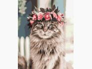 Коты и собаки: картины без коробки Кошачья магия