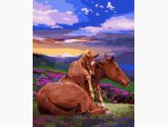 Животные и рыбки Свободные лошади