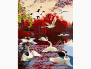 Птицы и бабочки картины по номерам Миграция лебедей