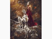 Животные и рыбки В компании волков