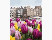 Букеты и натюрморты: картины без коробки Цветы из Амстердама