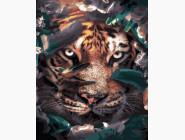Животные: картины без коробки Взгляд хищника