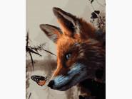 Животные: картины без коробки Лиса и бабочка