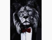 Животные: картины без коробки Джентльмен