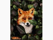 Животные: картины без коробки Лисица