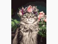 Коты и собаки: картины без коробки Кот в цветах
