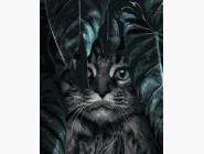 Коты и собаки: картины без коробки На охоте
