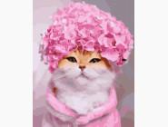 Коты и собаки: картины без коробки Цветочный котик
