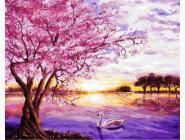 Пейзаж и природа Закат в розовых тонах