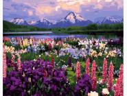 BRM21019 Рисунок по цифрам Долина полевых цветов