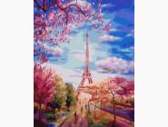 Весеннее небо Парижа