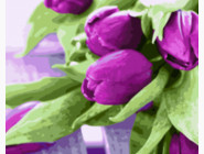 BRM21540 Раскраска по номерам Пурпурные тюльпаны