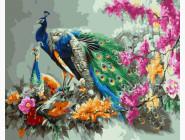 Павлин в цветах