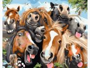 Лошадки Селфи