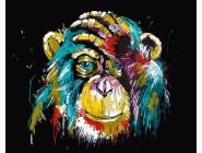 Цветной шимпанзе