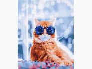 Стильный кот