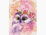 Птицы и бабочки картины по номерам Сова в розовом свете