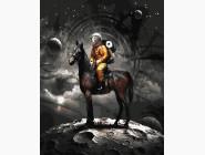 Портреты, люди на картинах по номерам В космос на коне