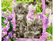Коты и собаки картины по номерам Котята в корзинке