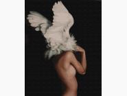 Абстракция и прочее Абстракция в крыльях