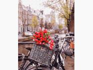 Доставка тюльпанов в амстердаме