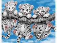 Маленькие тигрята