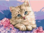 Коты и собаки картины по номерам Синеглазый котёнок