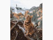 Кот у замка Нойшванштайн