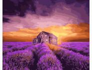 Закат над лавандовым полем