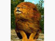 Шикарный лев