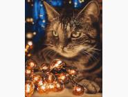 Коты и собаки картины по номерам Кот и гирлянда