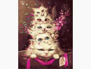 Коты и собаки картины по номерам На голове