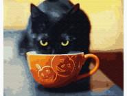 Довольный котик