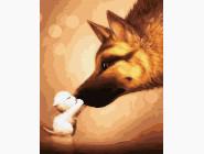 Коты и собаки картины по номерам Большая дружба