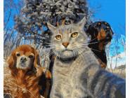 Коты и собаки картины по номерам Селфи