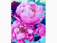 Цветы, натюрморты, букеты Волшебный аромат пионов