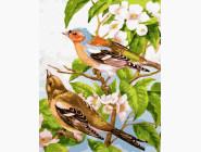 Птицы и бабочки картины по номерам Весенние птички