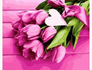 Нежность тюльпанов