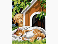 Коты и собаки Бровко и Соня