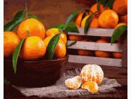 Картины по номерам для кухни Мандаринки