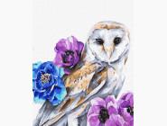 Птицы и бабочки картины по номерам Совушка в цветах