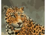 Животные и рыбки Леопард