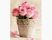 картина по номерам Розы в горшочке