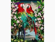 Птицы и бабочки картины по номерам Зеленокрылые ара