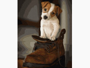 Коты и собаки Щенок в ботинке