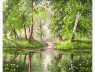 Пейзаж и природа Зелень вокруг
