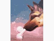Коты и собаки картины по номерам Дружба на всю жизнь