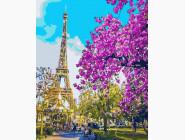 Городской пейзаж Париж. Цветение вишни