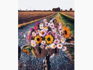 Цветы, натюрморты, букеты Букет из полевых цветов