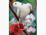 Птицы и бабочки картины по номерам Голубь в цвету